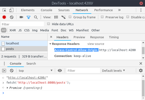 Devtools CORS Cross-Origin Resource Sharing Access-Control-Allow-Origin