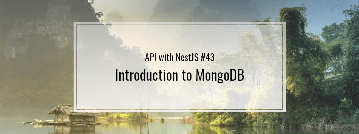 API with NestJS #43. Introduction to MongoDB
